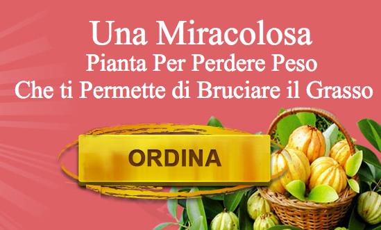 Garcinia2