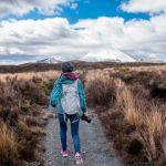 Come scegliere i bastoncini da trekking migliori: peso, altezza, marche, opinioni e consigli