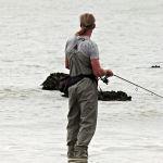 Canna da pesca: bolognese, inglese, surf casting o altre? Prezzi e offerta delle migliori canne da pesca
